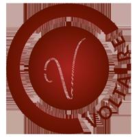 sbmesdocs logo voltaire 200x200 - A propos